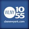 WLNY TV 10/55